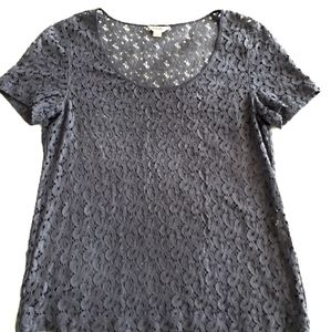Fossil scoop neck short sleeves lace top size S